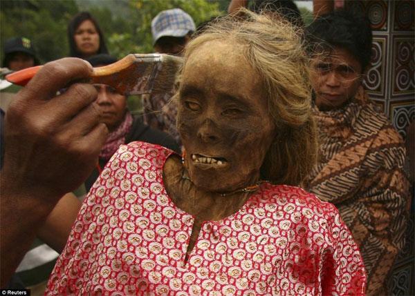 Người Tana Toraja đặt quan tài trên vách đá vôi dựng đứng