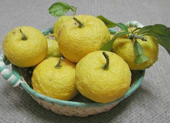 Nông dân Nhật tạo ra trứng gà thơm mùi quýt