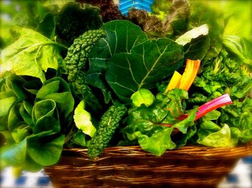 Những thực phẩm chữa bệnh tốt hơn thuốc
