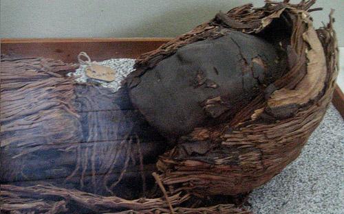 Xác ướp cổ nhất thế giới bị đe dọa