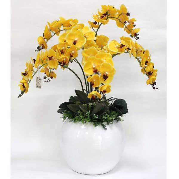 Người chơi hoa có thể điều chỉnh thời gian ra hoa theo ý muốn