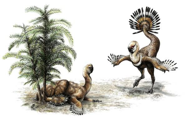 Phát hiện hóa thạch cặp đôi khủng long