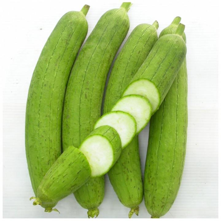 Người dân có thể trồng cây mướp cho gia đình bằng cách áp dụng đúng kỹ thuật trồng cây cơ bản.