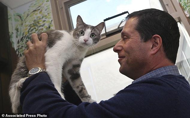 Các nhà khoa học thành công trong việc nghiên cứu ngôn ngữ loài mèo