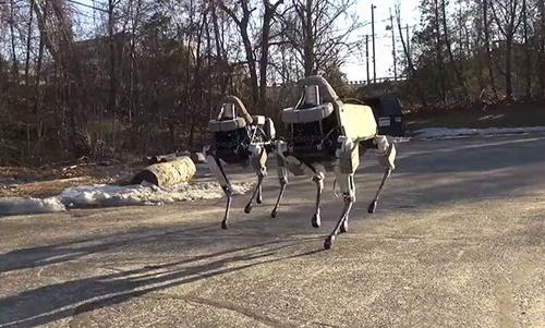 10 robot có hình dáng giống động vật