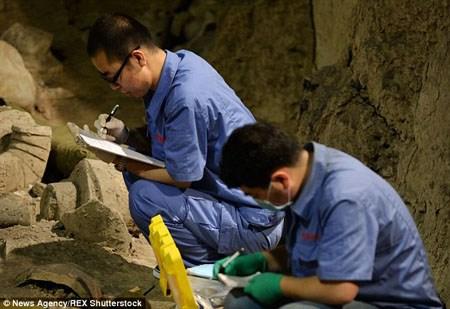 Phát hiện chiến binh 'ngoại' trong lăng mộ Tần Thủy Hoàng