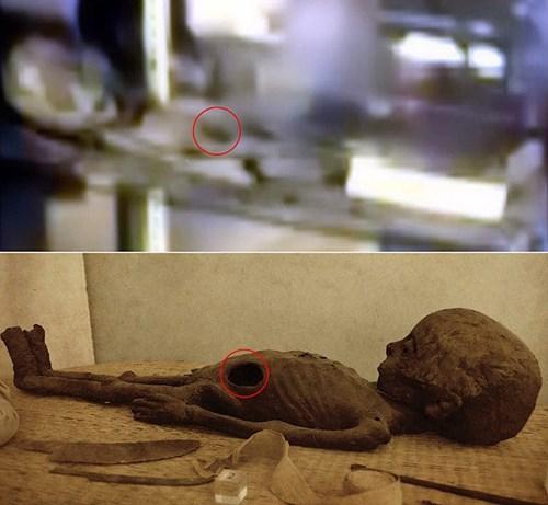 Lộ ảnh bằng chứng không thể chối cãi về người ngoài hành tinh?