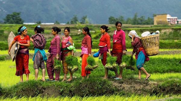 Những sự thật thú vị về đất Phật Nepal