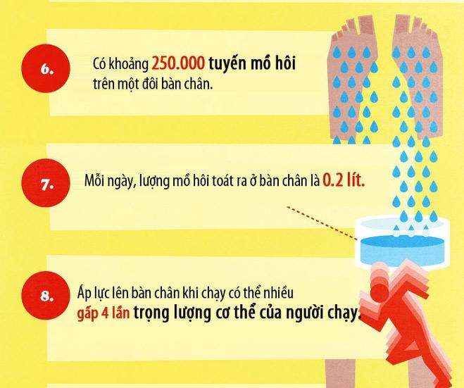 17 sự thật ít biết về bàn chân
