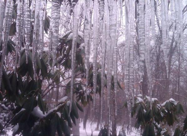 Băng tuyết làm 100 người chết /năm chỉ tính riêng ở Nga