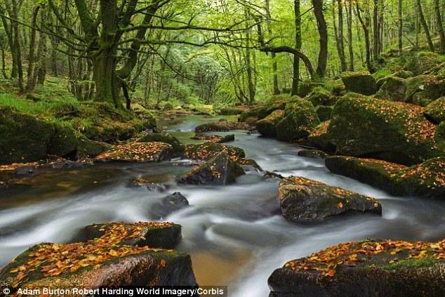 Bí ẩn cơn sốt vàng cách đây 4.500 năm ở Anh