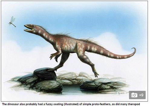 Tìm thấy loài khủng long mới có họ hàng với khủng long bạo chúa