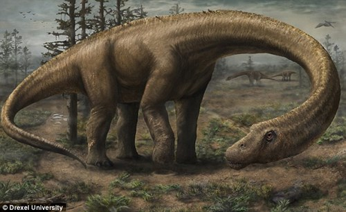 Khủng long Dreadnoughtus cổ dài chỉ nặng 40 tấn
