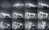 Xem 550 triệu năm tiến hóa của con người trong 1 phút