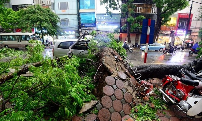 Hà Nội đề phòng mưa dông, gió giật mạnh do ảnh hưởng của bão số 1
