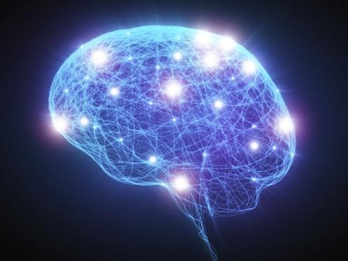 Lý giải nguyên nhân phụ nữ có não nhỏ hơn đàn ông