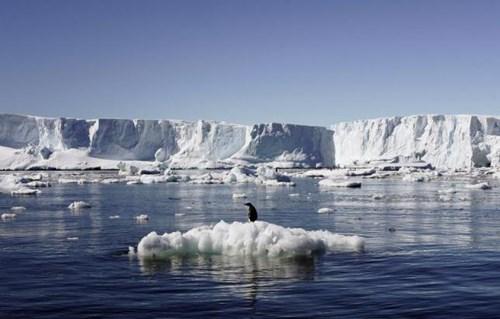 Nước biển có thể dâng thêm 6m trong tương lai