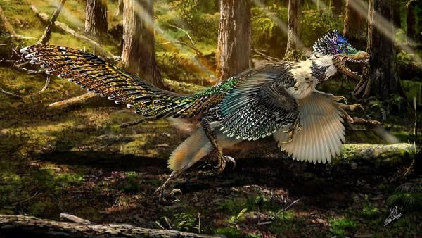 Phát hiện hóa thạch khủng long có cánh lớn nhất thế giới