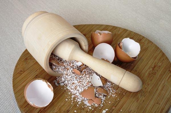Bạn cũng có thể sử dụng bột vỏ trứng này cho chim ăn.