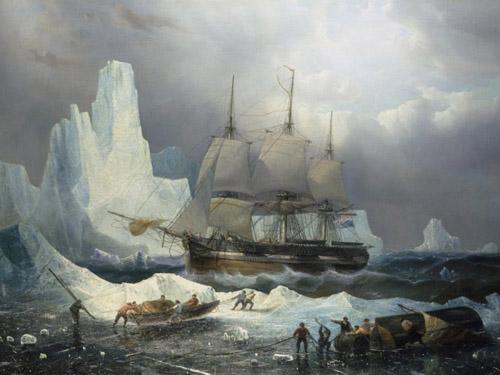 Đoàn thám hiểm Bắc Cực ăn thịt nhau để sống sót?