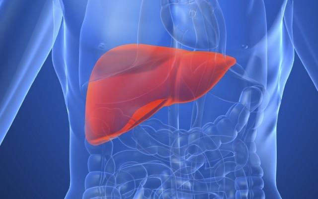 Suy gan: Nguyên nhân, triệu chứng và cách phòng ngừa