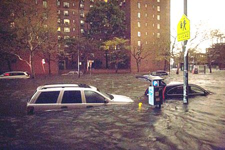 Hướng dẫn cách ứng phó khi lũ lụt