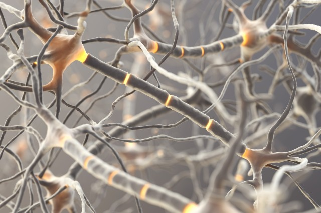 Điều khiển neuron thần kinh bằng kết nối không dây