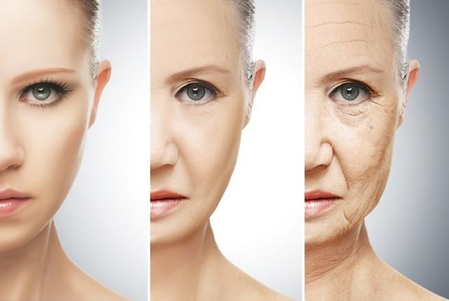 Tìm ra thủ phạm của quá trình lão hóa