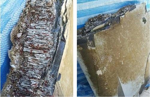 Phát  hiện mảnh vỡ máy bay nghi của MH370 ở Maldives