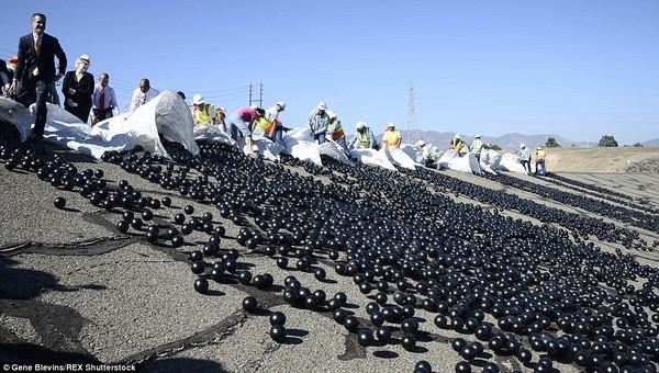 Thả 96 triệu quả bóng nhựa vào hồ nước để chống hạn hán