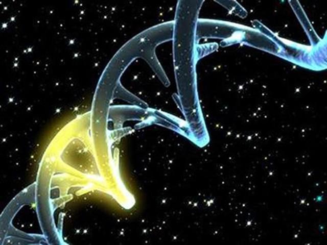 Bill Gates, Google hỗ trợ nghiên cứu chỉnh sửa DNA để chữa các bệnh di truyền