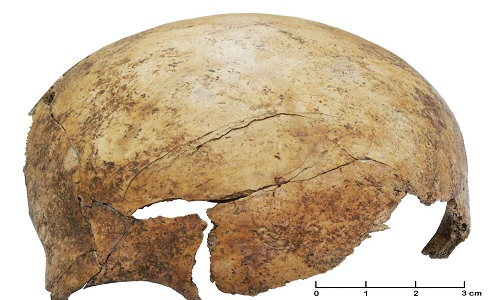 Ngôi mộ tập thể 7.000 năm hé lộ cuộc thảm sát đẫm máu