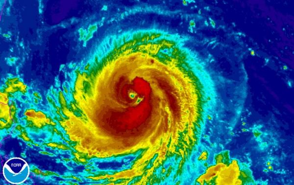 """""""Siêu"""" bão Goni giật cấp 17 đang tiến gần về phía Philippines"""