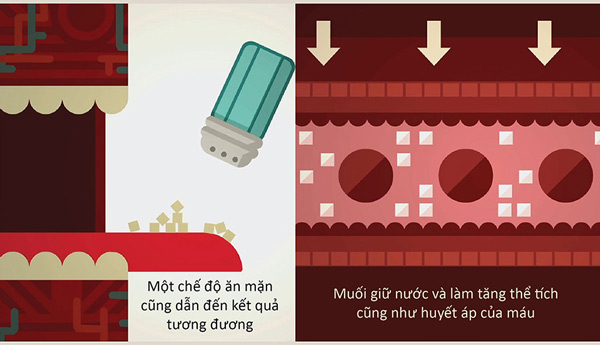 Huyết áp hoạt động như thế nào?