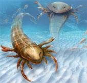 Bọ cạp biển khổng lồ từng tung hoành dưới đại dương