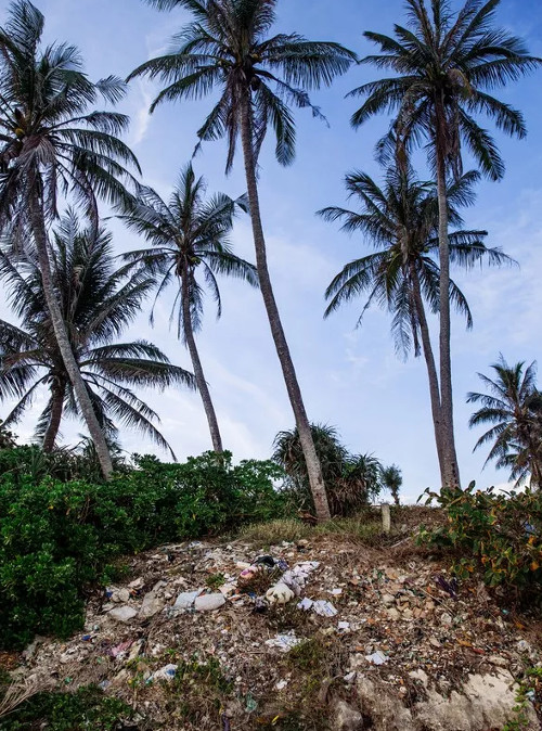 Những hình ảnh gây sốc khó tin về rác thải ở Lý Sơn