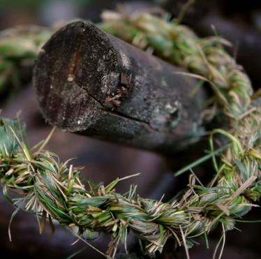 Làm sao bện dây thừng từ cỏ dễ dàng nhất?