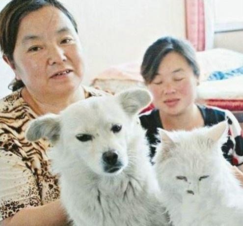 Mèo đẻ ra chó