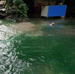 Giải mã nguyên nhân nước ngập chuyển màu xanh ở Hà Nội