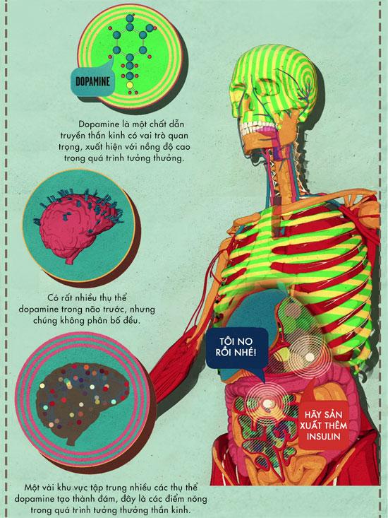 Đường tác động đến não bộ như thế nào?