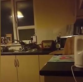 """Video: Cảnh """"khách ma"""" đột nhập nhà bếp?"""