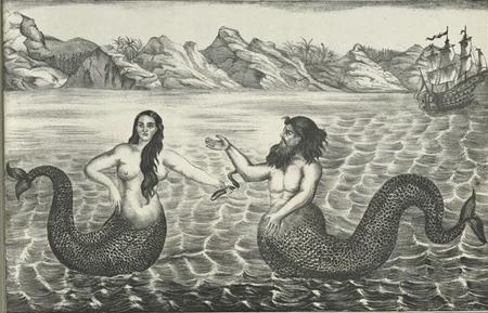 Huyền thoại và hiện thực về người cá