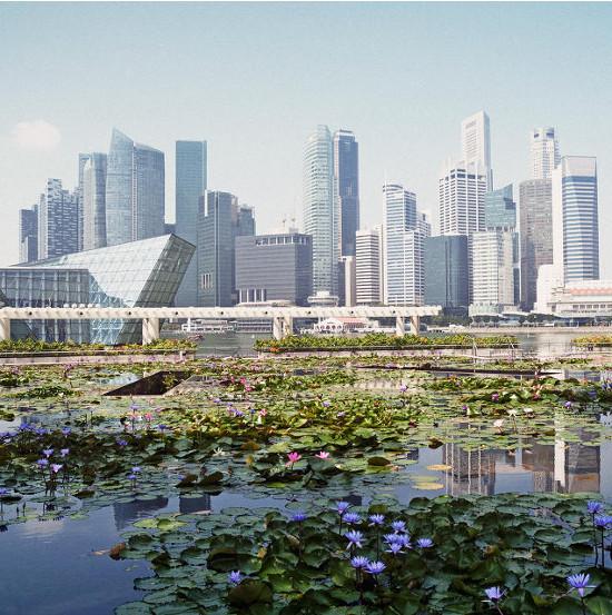 """Singapore lên kế hoạch trở thành """"Quốc gia thông minh"""" đầu tiên trên thế giới"""