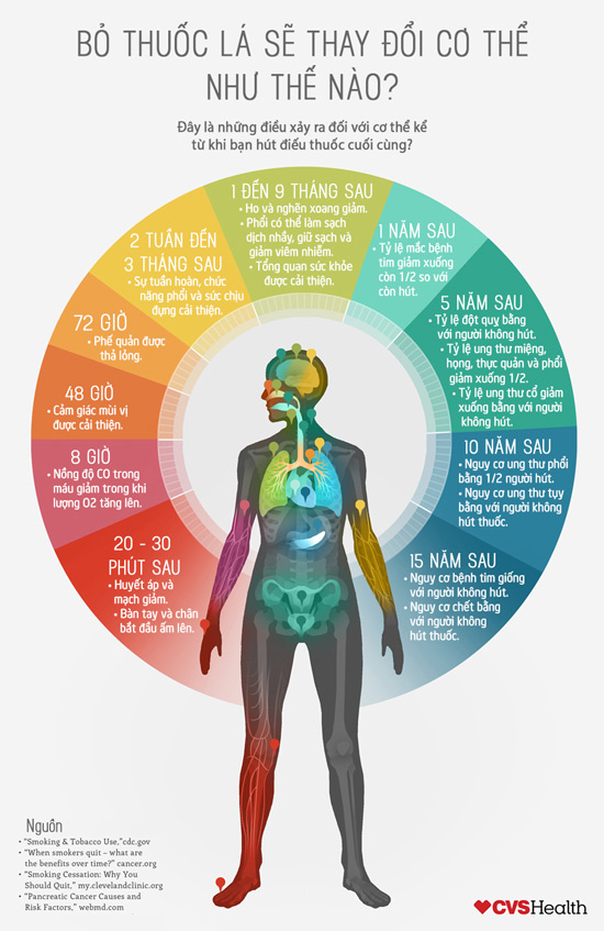 Bỏ thuốc lá sẽ tác động như thế nào đối với cơ thể?