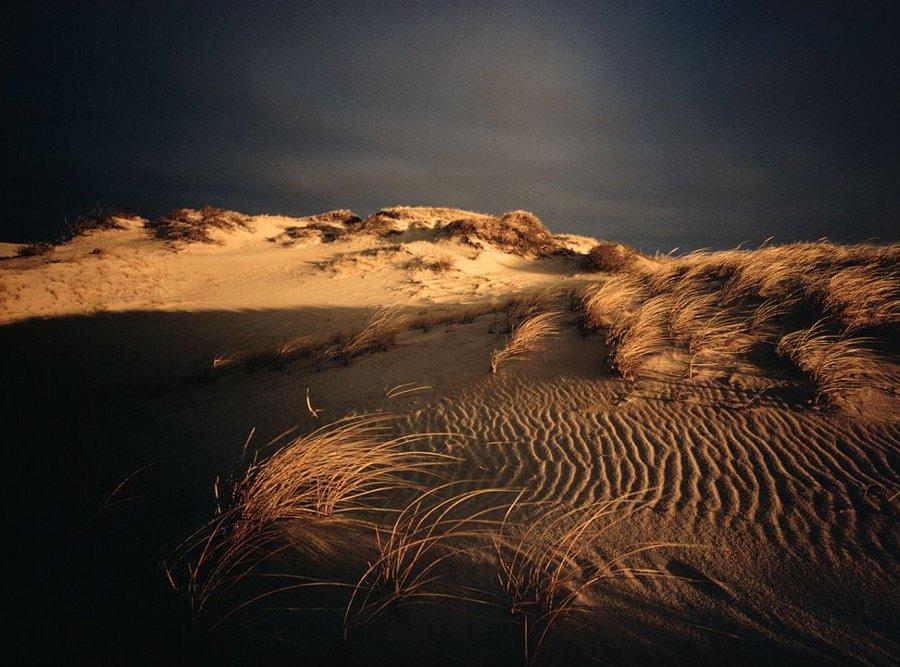 Chùm ảnh tuyệt đẹp về thiên nhiên trên khắp thế giới