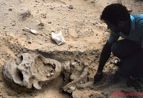 Nghĩa địa người ngoài hành tinh ở châu Phi