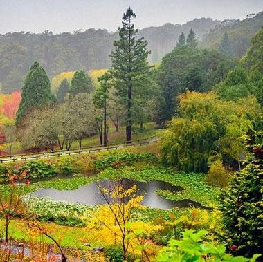 """Những bức tranh """"mùa thu vàng"""" tuyệt đẹp ở các nước"""