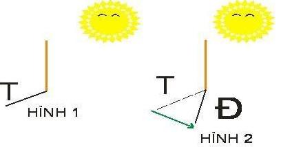 Cách xác định hướng đơn giản bằng mặt trời và kinh nghiệm