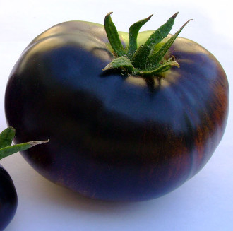 """Thực hư """"công dụng thần kỳ"""" của cà chua đen"""