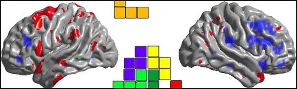 """Chơi game """"xếp hình"""" mỗi ngày rất tốt cho não"""